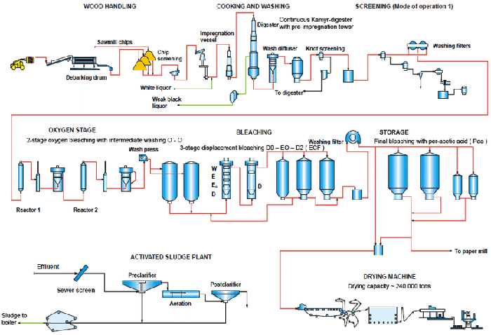 chemical sulphate pulping process