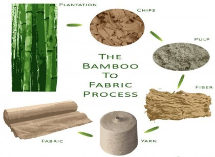 What is the prospect of bamboo pulp making