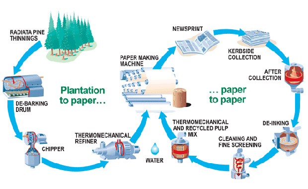 paper recycling diagram