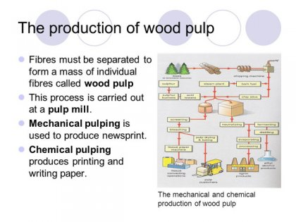 What is the type and process of pulp